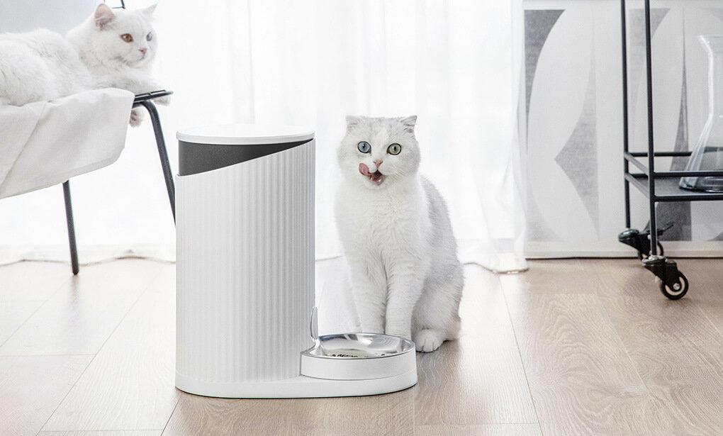 可远程操控的智能宠物喂食器,小米有品众筹仅199元 - 热点资讯