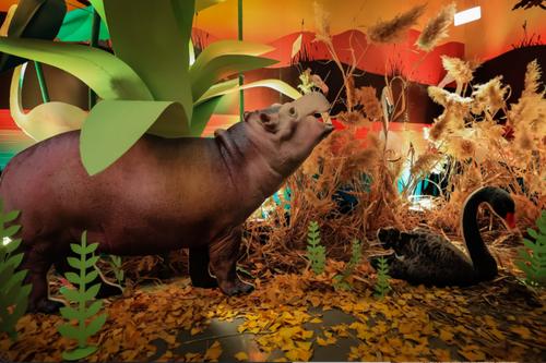 带着 vivo S7 逛野生动物园,随手一拍就是超清大片 - 热点资讯 家电百科 第2张