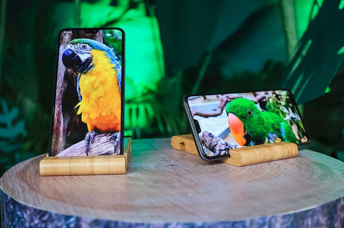 带着 vivo S7 逛野生动物园,随手一拍就是超清大片 - 热点资讯 家电百科 第8张